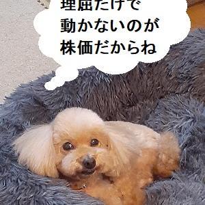 【あさイチの株の素】小売売上高キッカケでNYは利確の動き、東京はクレディスイスのTOPIX先物の売りに注意