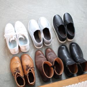 2019冬用の靴 スニーカー、スリッポンにブーツ