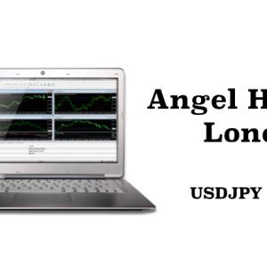 初めてのEA購入!GogoJungleで「Angel Heart Lono」を購入