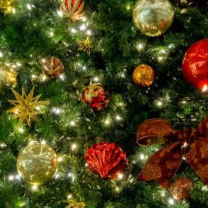 クリスマスソングをフランス語で♪歌詞付き動画でフランス語の勉強!