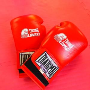 【保存版】キックボクシングでマススパー・受け返しがしたい人がそろえるべき7つの道具と費用