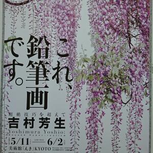 京都まで「吉村芳生 超絶技巧を超えて」を見てきた。