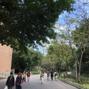 [問題]台北の「カフェ・公園・博物館・運動場」全てを兼ね揃えた無料で利用できる施設といえば!?