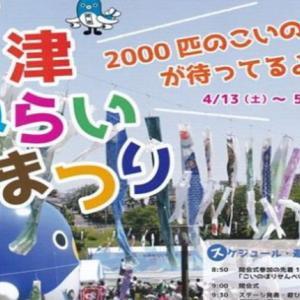 鯉のぼりの公園でイベント公津みらいまつりへ行ってみよう!