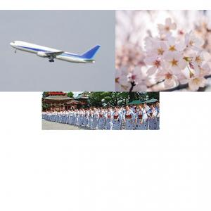 5月の成田山イベント成田山平和大塔まつり奉納総踊り