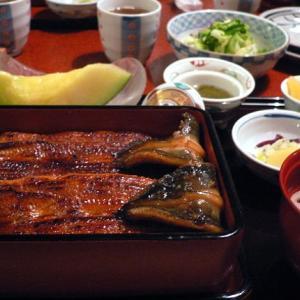 成田うなぎ祭り2019はいつから始まる?