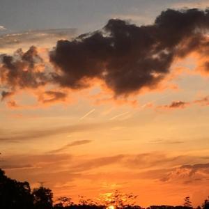 【びっくり】稲荷の神さまの使い・眷属キツネ雲を発見!