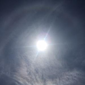 太陽に虹を発見!今日は日輪の日でしたね^_^