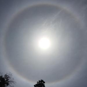 【画像あり】ハロ日輪と龍神雲!千と千尋の神隠しの川の神様!?