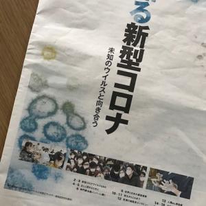 新型コロナウイルスの基礎知識