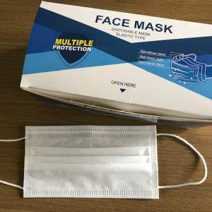 思いがけず届いたマスク