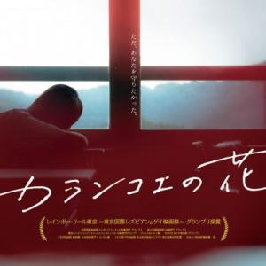 【思いやりから生まれた悲劇】カランコエの花【邦画】