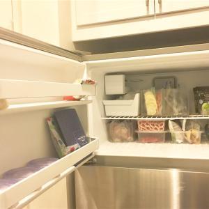 アメリカのアパートの冷凍庫を公開