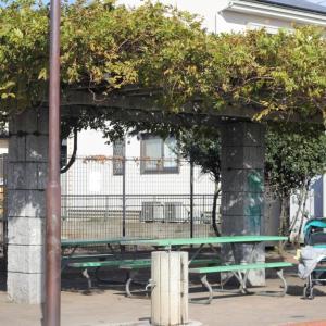 【綾瀬市大上】ゆめ公園と自治会館のお餅