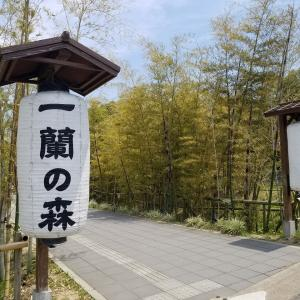 一蘭の森:糸島の人気スポット「一蘭の森」できたて超生麺を堪能!