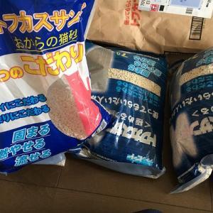 おからの猫砂で人気!トフカスサンドとトフカスサンドKの違いって?
