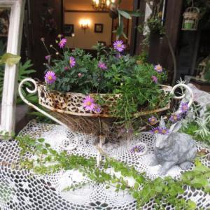 ***ペンキ塗りまくりガーデンファニチャーの再生&秋の寄せ植え