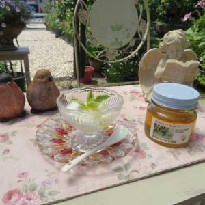 ***ヽ(^o^)丿わ~い!蜜柑の蜂蜜が届きました&不思議で魅力的なお花の開花