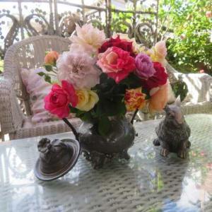 ***(*^_^*)夏剪定のバラをアンティークで素敵に飾る&台風の爪痕&今日のバラ剪定76鉢