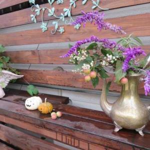 ***(#^.^#)カボチャでハロウィン&寒~い日の久々サブちゃん&姫リンゴの使い道