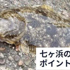 七ヶ浜町のヒラメポイントを紹介!釣りキチさんは情報源?【2019年9月釣果】