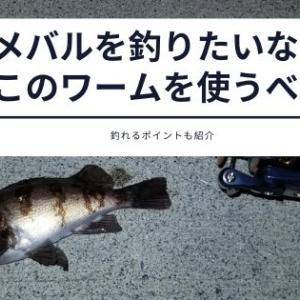 メバル釣りにおすすめのワームは?よく釣れるポイントも紹介