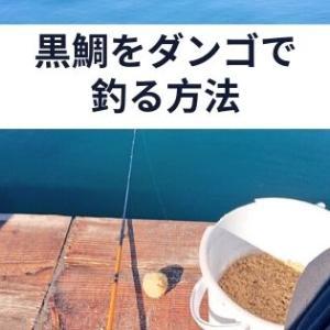 黒鯛のダンゴ釣りのおすすめの仕掛けは?数を釣るためのコツも紹介
