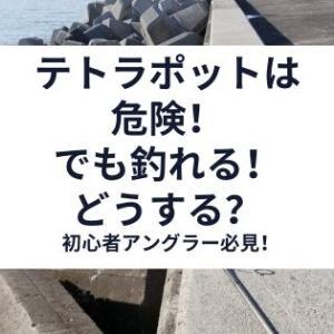 テトラポットでの釣りは危険!地形を利用した釣り方と釣れる魚を紹介