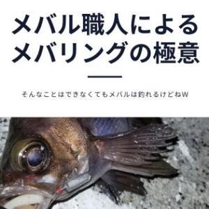 メバル職人によるワームでの釣り方を解説!おすすめのワームも紹介