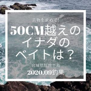宮城県牡鹿半島の磯釣り2020年9月の釣行記!丸呑みされた餌は何だった?