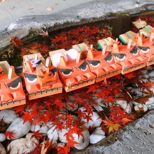 今が紅葉の見頃です。鎌倉散策。