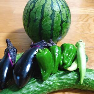野菜を育てることは大人の野菜嫌いにも効果的