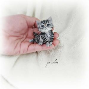 サバトラ猫の赤ちゃん完成です😊
