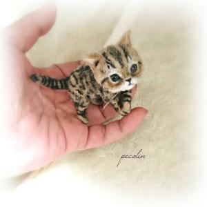 キジトラ猫の子猫完成です😊