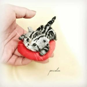 アメショの子猫完成です☺️