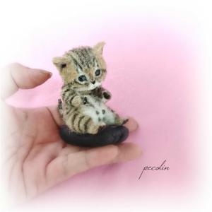 キジトラ猫の子猫完成です☺️