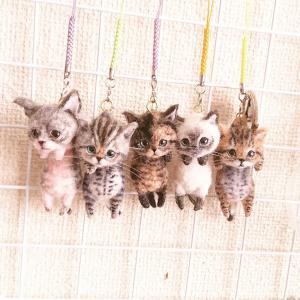 脱力感ストラップサビ猫の子猫🙂