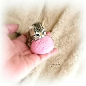 クッションで遊んでるキジトラの子猫🙂