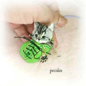 極小サイズ豆猫ちゃん😊
