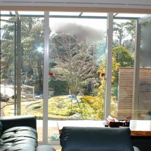 我が家のシンボルツリーと苔の現在