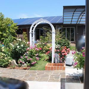 外構工事にかっかった費用と1年後の庭