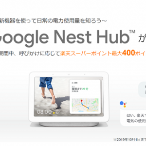 【楽天でんき・SPU対策】既に契約中の方はスマートスピーカー(Google Nest Hub)が先着3,000名にもらえるキャンペーン