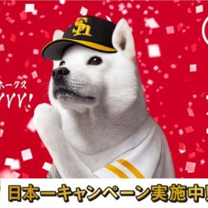 【福岡ソフトバンクホークス・祝!日本一セール】22時15分からPayPayでおトク!当たる!セール!開催!