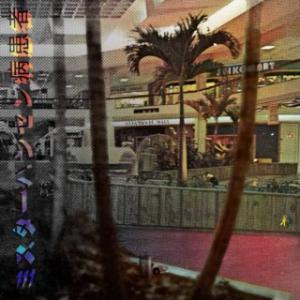Aäron Lepers/ミスターハンセン病患者: Altamonte Mall (2019) - イカにもタコにもクラゲにも ウニにも