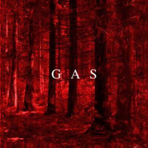 V.A.: Kompakt Toal 20, GAS: Zeit (2020) - サバンナからコンサートホール、そして地下室へ