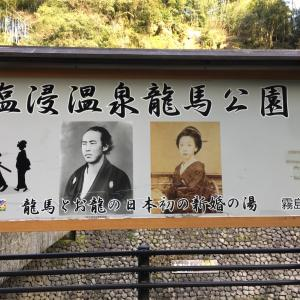 そこは温泉に鴨に天界の広場。鹿児島県にもある(坂本)龍馬公園。子供が楽しめる穴場です♪