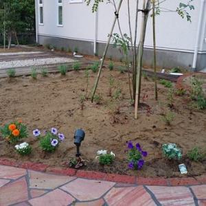 ガーデニング前庭編①