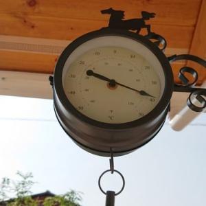 ガーデン時計〈258日目〉