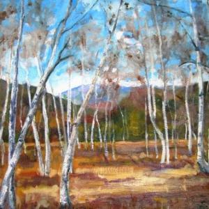 白樺林を描く