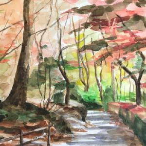 森林公園のもみじを描く